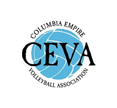Ceva Volleyball